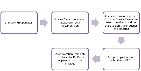 Opulentus Process Flow